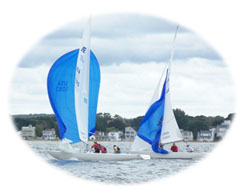 Sailboats with spinnakers up
